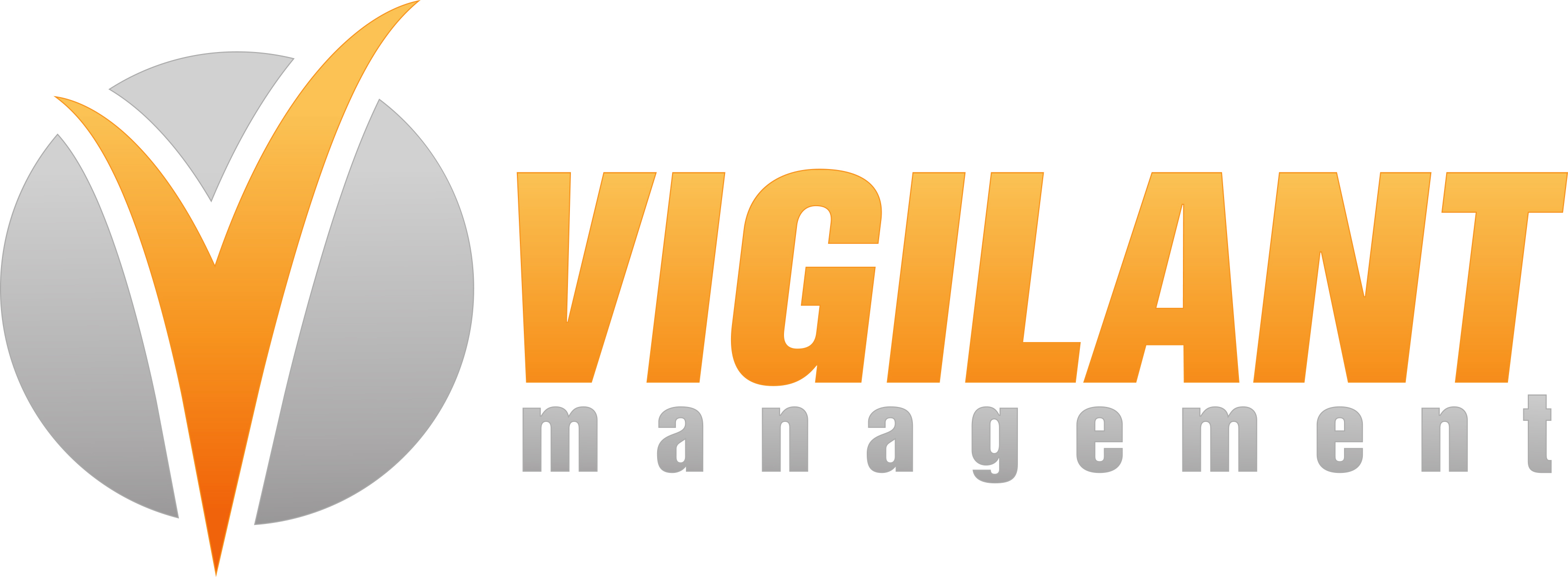 Vigilant Management logo